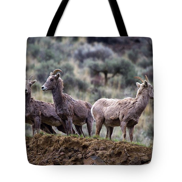 On The Ledge Tote Bag by Mike  Dawson