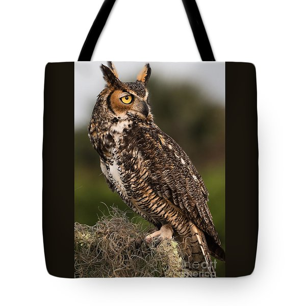 Tote Bag featuring the photograph On The Look Out by Mary Lou Chmura