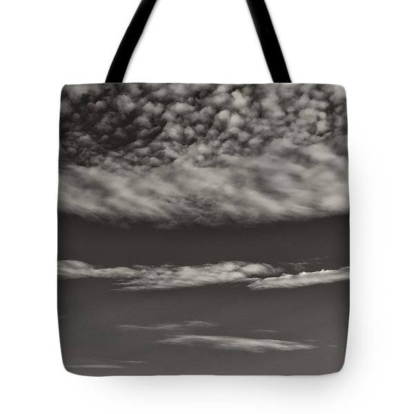 On The Lookout Tote Bag by Bernd Laeschke