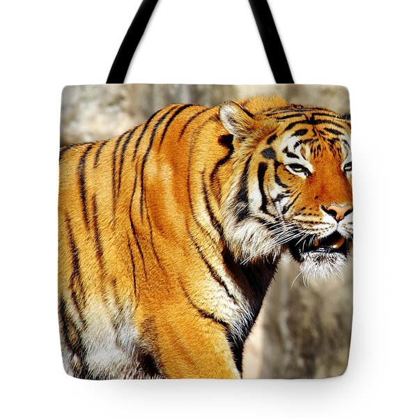 On The Prowl Tote Bag by Jason Politte