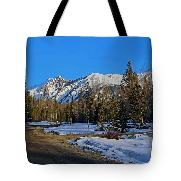 On The Road Again Tote Bag by Fiona Kennard
