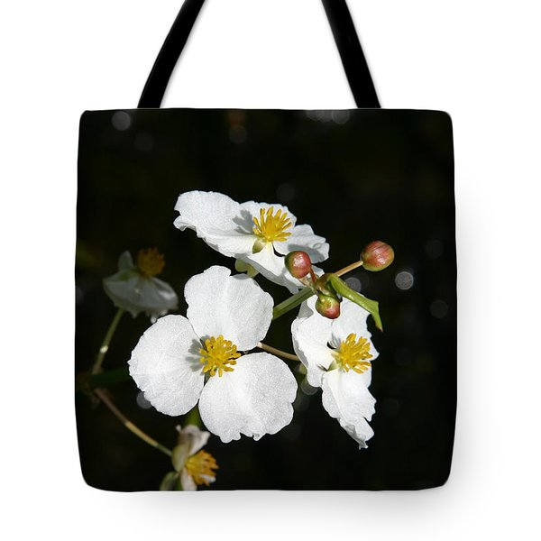 Tote Bag featuring the photograph On The Shore Line by Denyse Duhaime