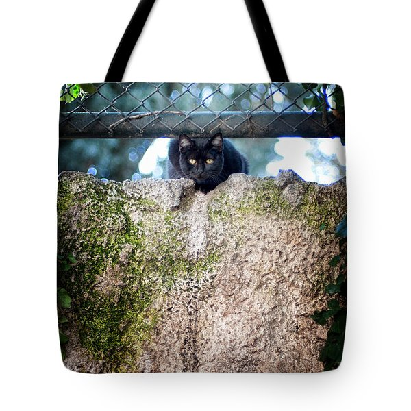 Tote Bag featuring the photograph On The Wall by Laura Melis