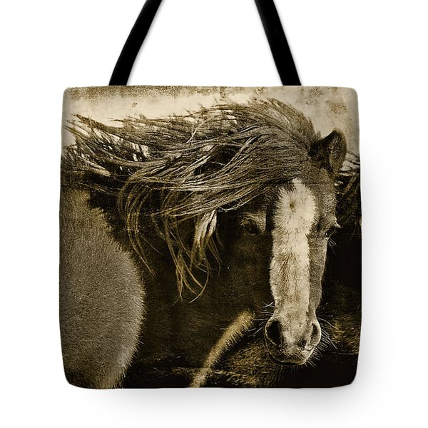 On The Winds Of Time Tote Bag