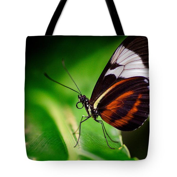 On The Wings Of Beauty Tote Bag