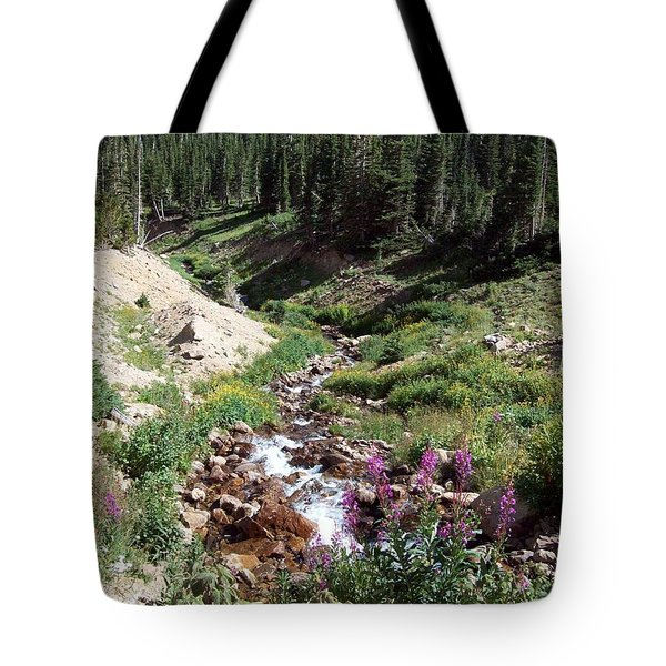 On Top Of The Continental Divide In The Rocky Mountains Tote Bag