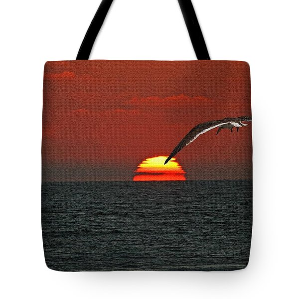 Tote Bag featuring the photograph One Black Skimmers At Sunset by Tom Janca