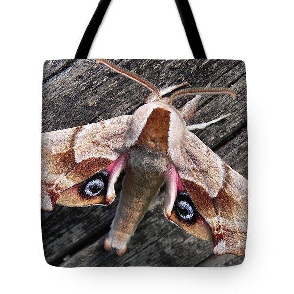 One-eyed Sphinx Tote Bag