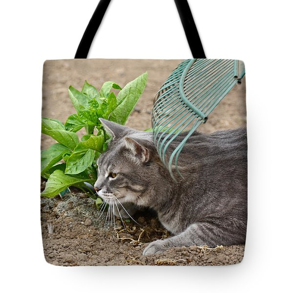 One Happy Cat Tote Bag