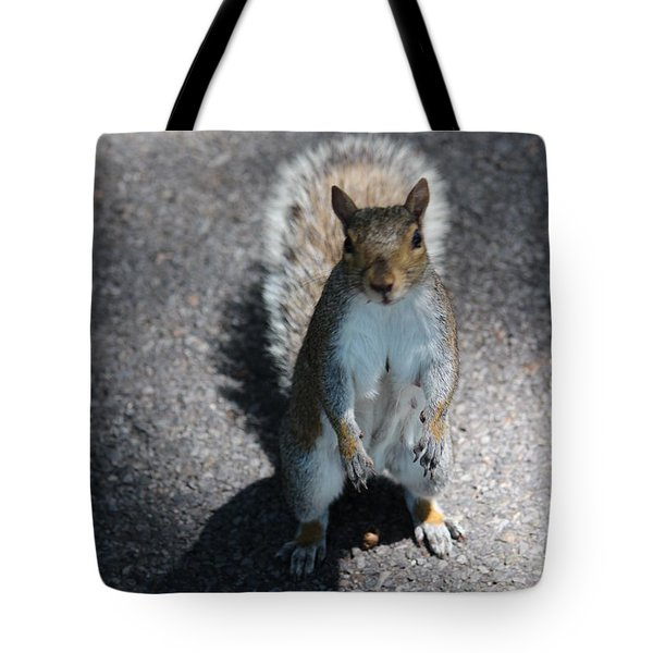 One Is Just A Tease Tote Bag