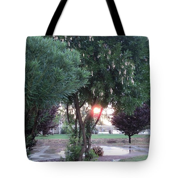 Tote Bag featuring the photograph One Last Moment by Carla Carson