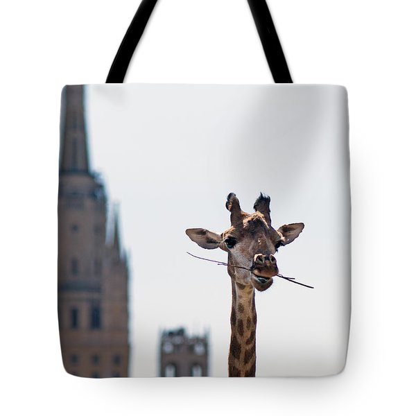 One More Bite To Outgrow The Tallest 4 Tote Bag by Alexander Senin