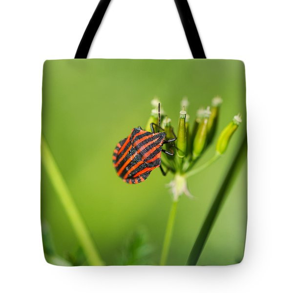 One More Bottle Doesn't Hurt - Square - Featured 3 Tote Bag by Alexander Senin