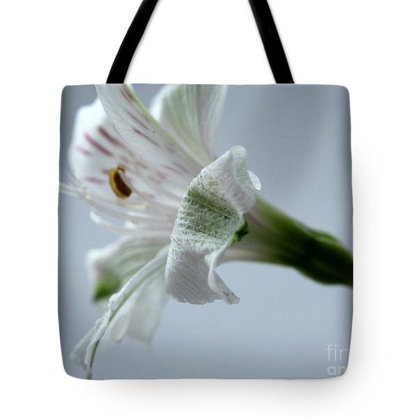 One More Day Tote Bag