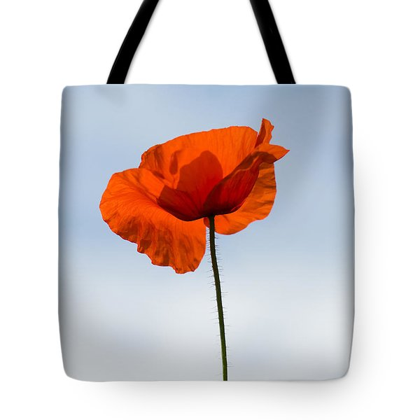 One Poppy Tote Bag by Anne Gilbert