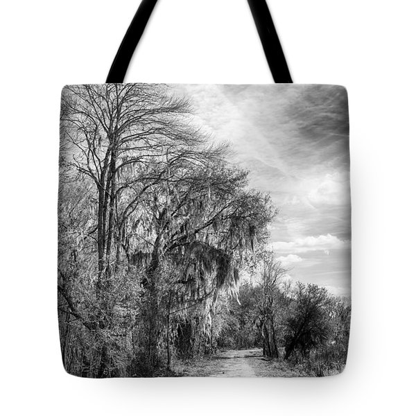 Tote Bag featuring the photograph One The Levy by Howard Salmon
