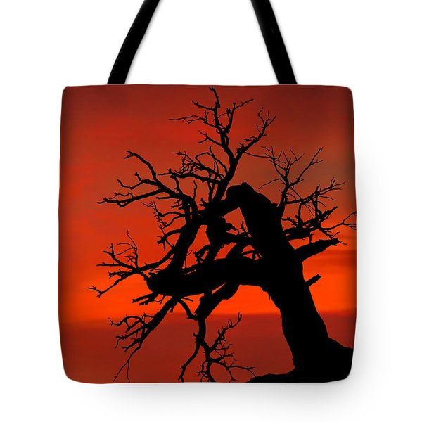 One Tree Hill Silhouette Tote Bag