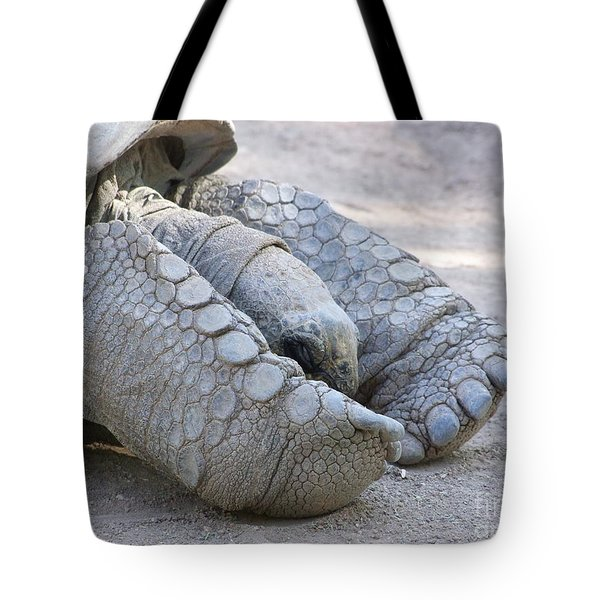 One Very Old Very Large Sulcata Tortoise Tote Bag