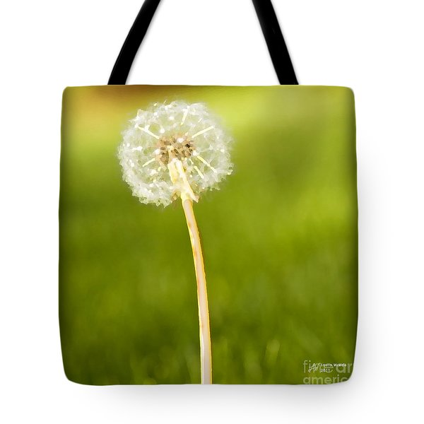 One Wish  Tote Bag by Artist and Photographer Laura Wrede