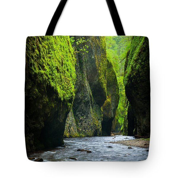 Oneonta River Gorge Tote Bag by Inge Johnsson