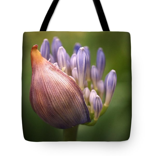Only The Beginning Tote Bag by Rona Black