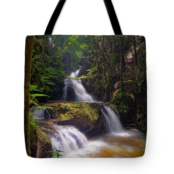 Tote Bag featuring the photograph Onomea Falls by Jim Thompson