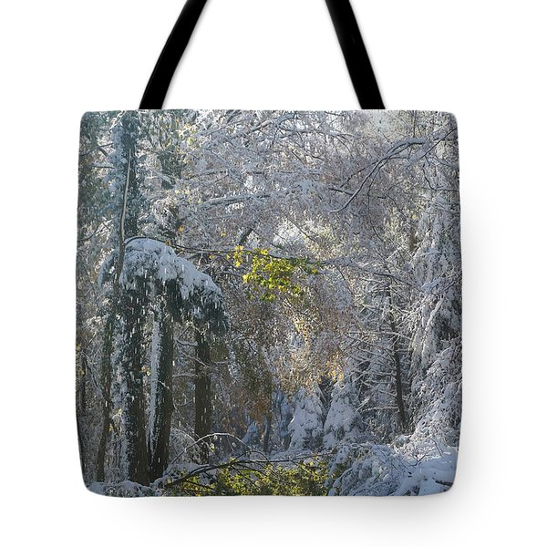 Onset Of Winter 1 Tote Bag by Rudi Prott