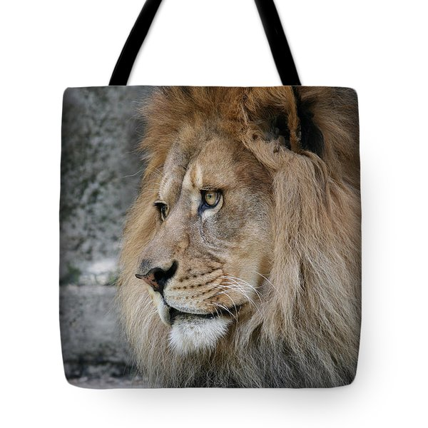 Tote Bag featuring the photograph Onyo #11 by Judy Whitton
