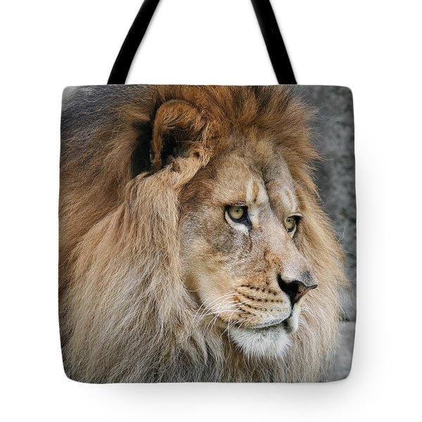 Onyo #13 Tote Bag