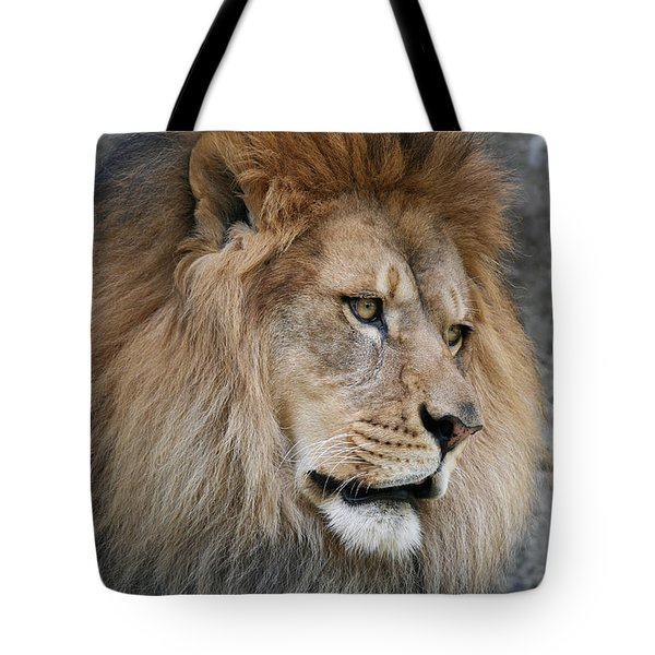 Tote Bag featuring the photograph Onyo #4 by Judy Whitton