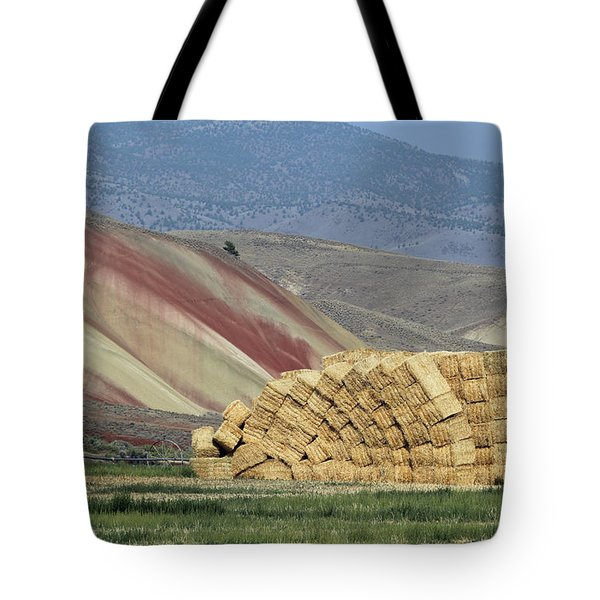 Oops - Something Shifted Tote Bag
