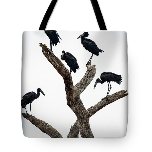 Openbill Storks Perching On A Tree Tote Bag