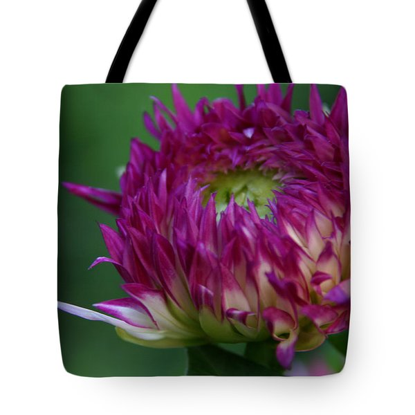 Tote Bag featuring the photograph Opening Day by Denyse Duhaime