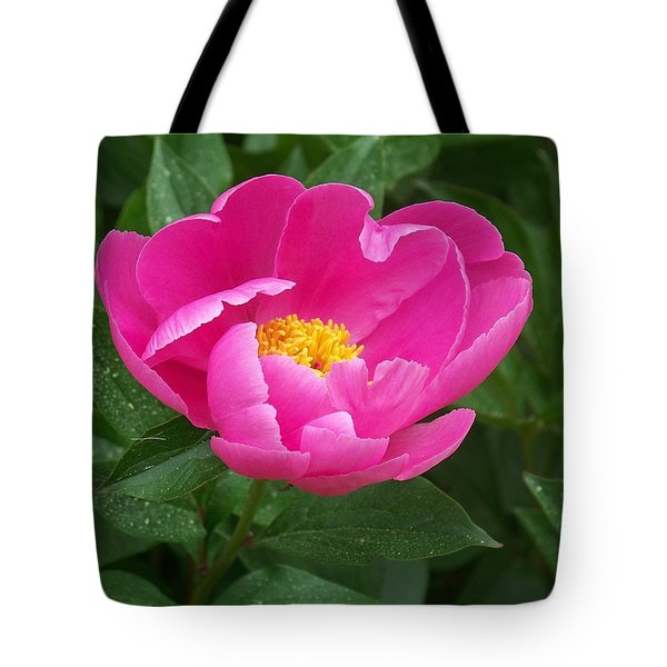 Tote Bag featuring the photograph Peony  by Eunice Miller