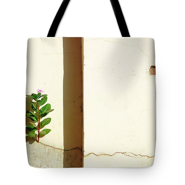 Optimism Pays Tote Bag