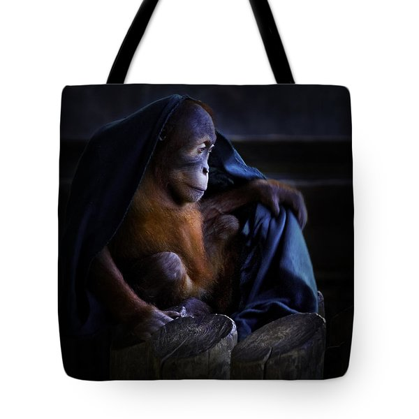 Orang Utan Youngster With Blanket Tote Bag