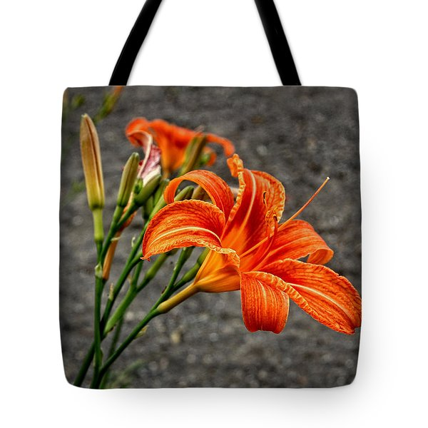 Orange And Green Tote Bag