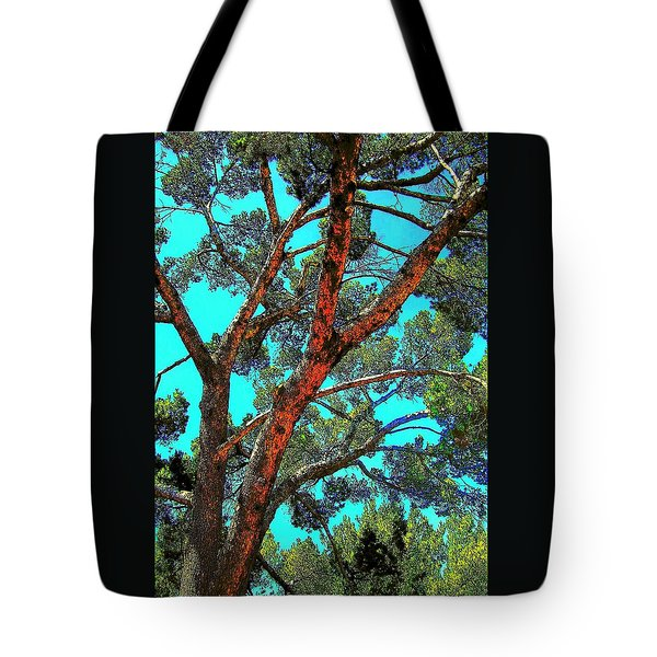 Orange And Turquoise  Tote Bag
