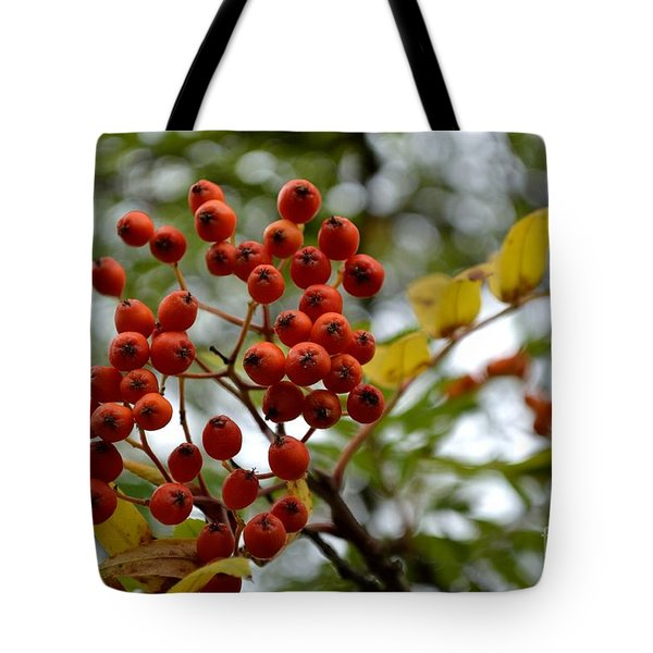 Tote Bag featuring the photograph Orange Autumn Berries by Scott Lyons