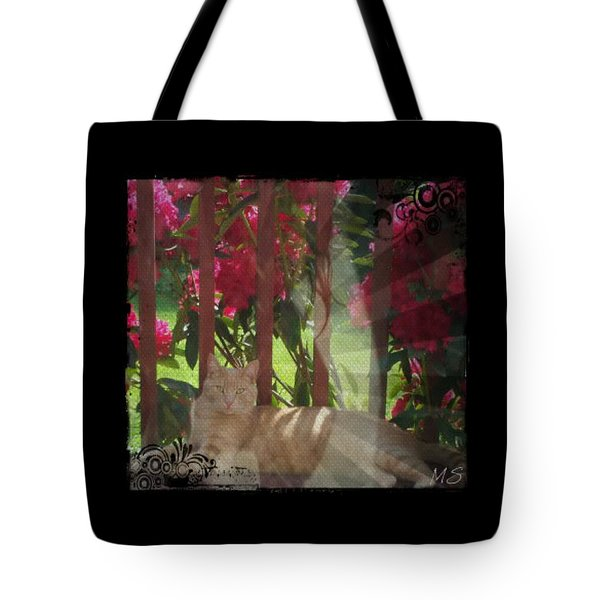 Tote Bag featuring the photograph Orange Cat In The Shade by Absinthe Art By Michelle LeAnn Scott