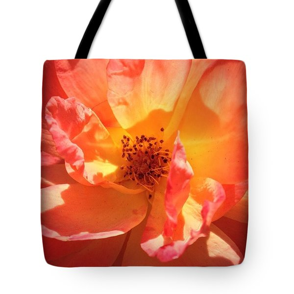 Orange Confection Rose Tote Bag by Anna Porter