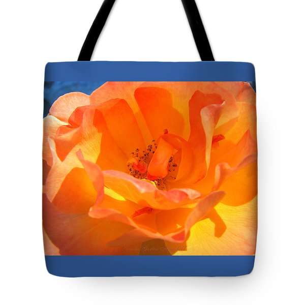 Orange Delight -  Images From The Garden Tote Bag by Brooks Garten Hauschild