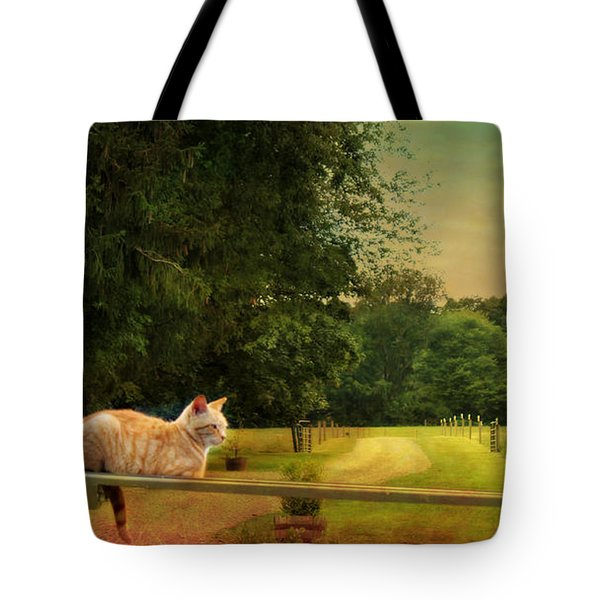 Orange Farm Cat Tote Bag