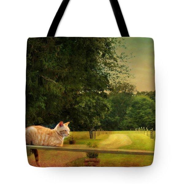 Orange Farm Cat Tote Bag