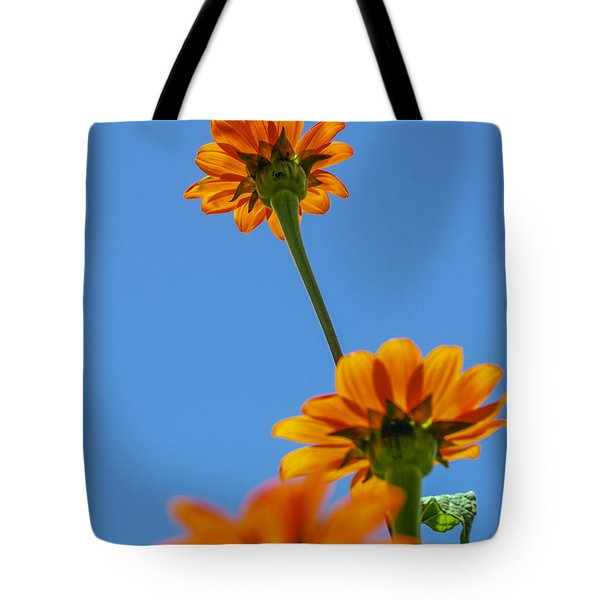 Tote Bag featuring the photograph Orange Flowers On Blue Sky by Debbie Karnes