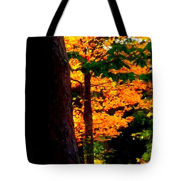 Tote Bag featuring the photograph Orange Foliage by Denyse Duhaime
