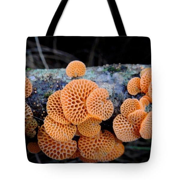 Orange Fungus Tote Bag by Pamela Walton