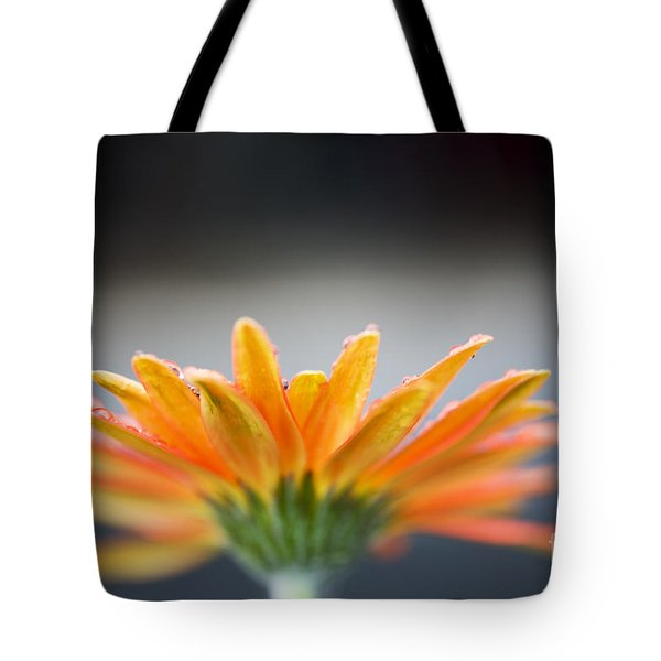 Tote Bag featuring the photograph Orange Gerbera Daisy by Charmian Vistaunet