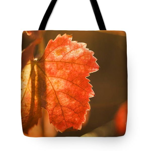 Orange Grape Leaf Macro Tote Bag
