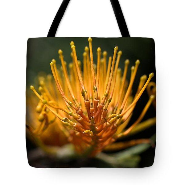 Orange Grevillea Tote Bag by Joy Watson
